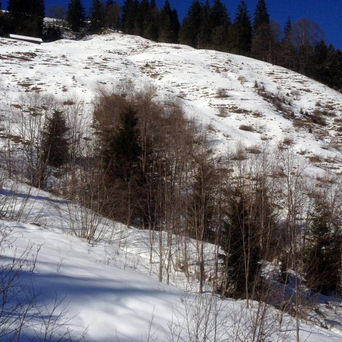 Singletreff westerwald