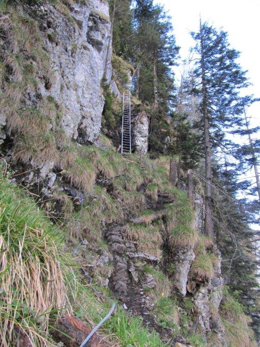 gipfelbuch verh ltnisse vitznauer gersauerstock 1452 m m alpine. Black Bedroom Furniture Sets. Home Design Ideas