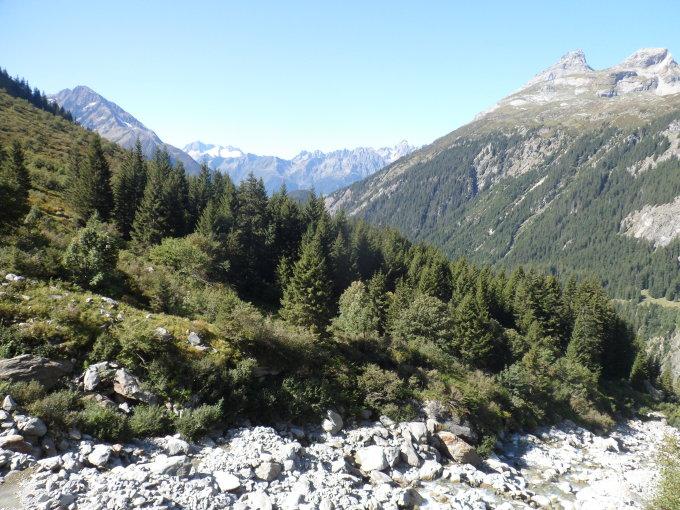 Gipfelbuch - TourenFhrer - Rinderstock, 2463 - opennewssource.com